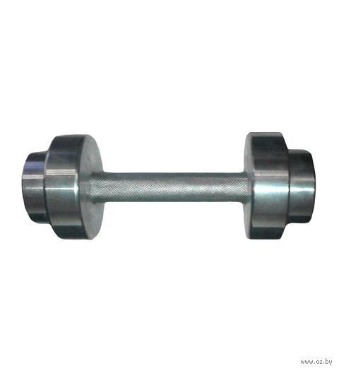 Гантель разборная металлическая (4 кг) — фото, картинка