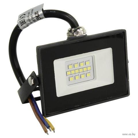 Прожектор светодиодный (LED) FL SMD LIGHT Smartbuy-10W/6500K/IP65 — фото, картинка