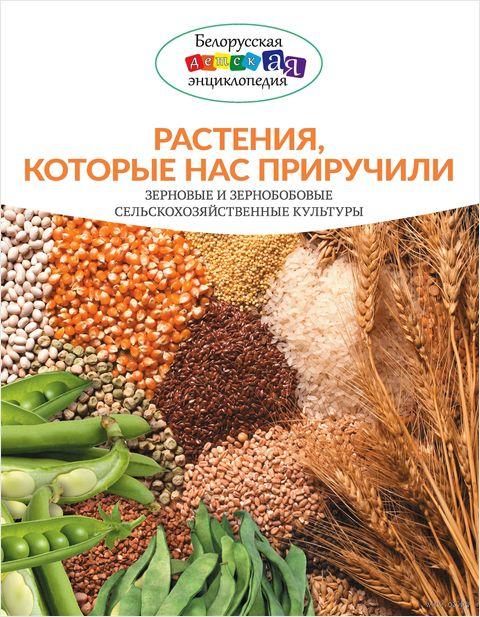 Растения, которые нас приручили. Зерновые и зернобобовые сельскохозяйственные культуры — фото, картинка