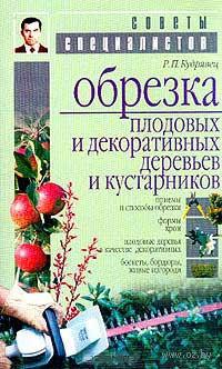 Обрезка плодовых и декоративных деревьев и кустарников — фото, картинка