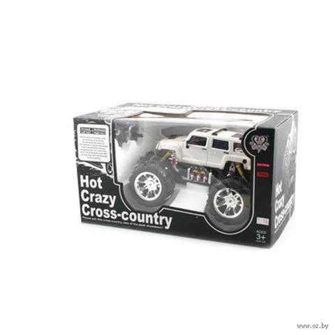 """Автомобиль на радиоуправлении """"Hot Crazy Cross-country"""""""