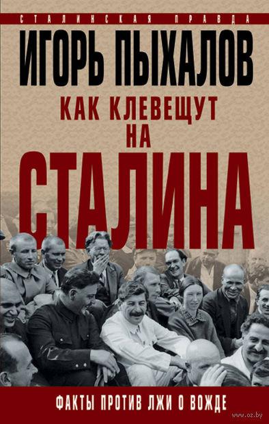 Как клевещут на Сталина. Факты против лжи о Вожде — фото, картинка