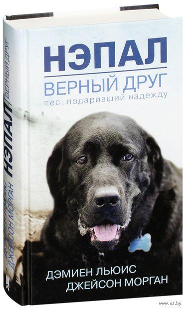 Нэпал - верный друг. Пес, подаривший надежду — фото, картинка