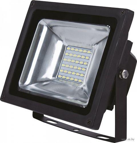 Прожектор садовый светодиодный LED FL SMD 30W/4100K/IP65 — фото, картинка