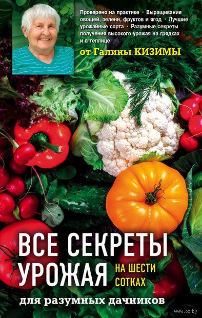 Все секреты урожая на шести сотках для разумных дачников от Галины Кизимы — фото, картинка