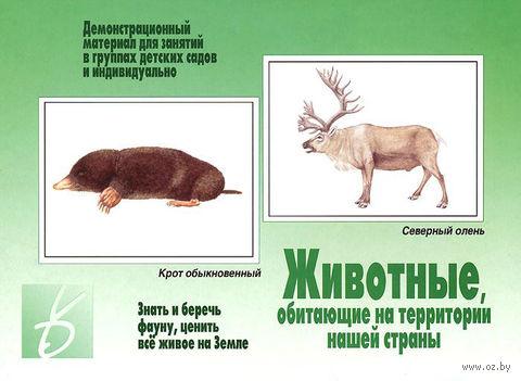 """Игра """"Животные, обитающие на территории нашей страны"""""""