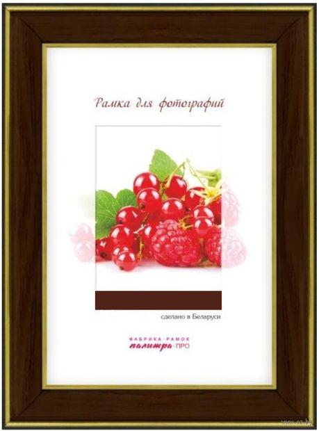 Рамка пластиковая со стеклом (21х30 см; арт. 25/448) — фото, картинка