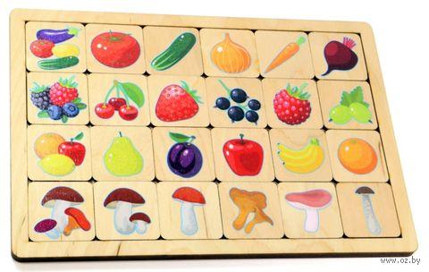 """Рамка-вкладыш """"Овощи и фрукты. Ягоды и грибы"""" — фото, картинка"""