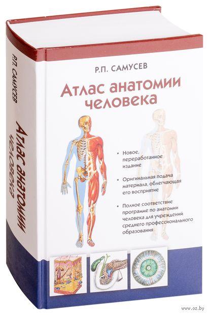 Атлас анатомии человека. Учебное пособие — фото, картинка