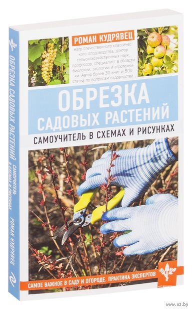 Обрезка садовых растений. Самоучитель в схемах и рисунках — фото, картинка