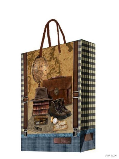 """Пакет бумажный подарочный """"Сборы путешественника"""" (26х32,4х12,7 см; арт. 44199) — фото, картинка"""