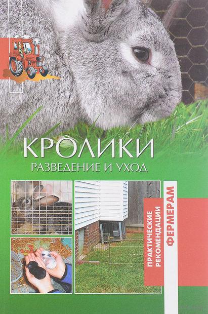 Кролики. Разведение и уход — фото, картинка