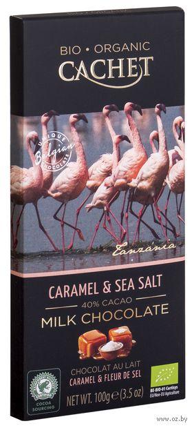 """Шоколад молочный """"Organic. C карамелью и морской солью"""" (100 г) — фото, картинка"""