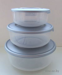 Набор контейнеров термостойких (3 шт.; арт. 9040669) — фото, картинка