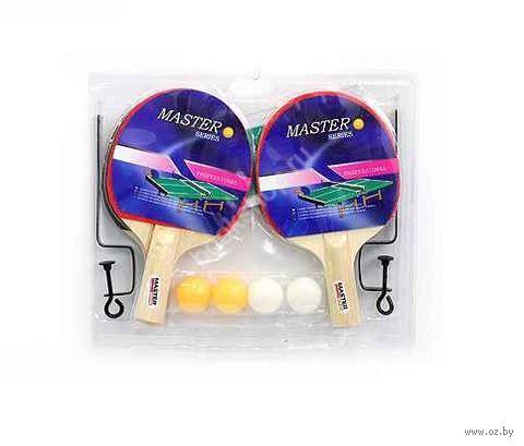 Набор для игры в теннис (с сеткой) — фото, картинка