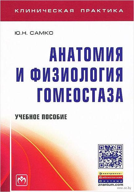 Анатомия и физиология гомеостаза — фото, картинка