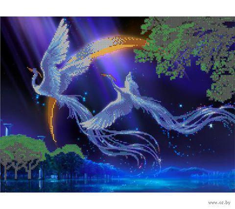 """Канва с нанесенным рисунком """"Райские птицы"""""""