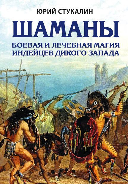 Шаманы. Боевая и лечебная магия индейцев Дикого Запада — фото, картинка