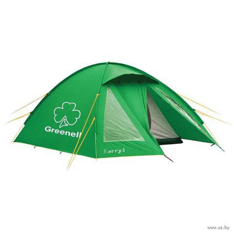 """Палатка """"Керри 4 v.3"""" (зелёеная) — фото, картинка"""