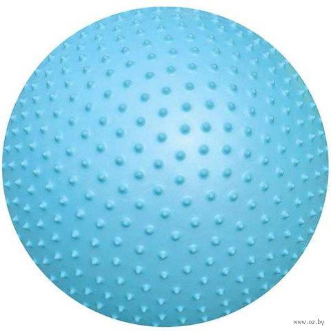 Мяч гимнастический (65 см; массажный; арт. AGB-02-65) — фото, картинка