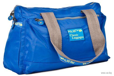 Сумка спортивная П1288-15 (15 л; синяя) — фото, картинка