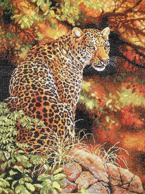 "Вышивка крестом ""Взгляд леопарда"" (арт. DMS-35209)"