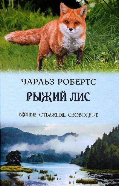 Рыжий лис — фото, картинка