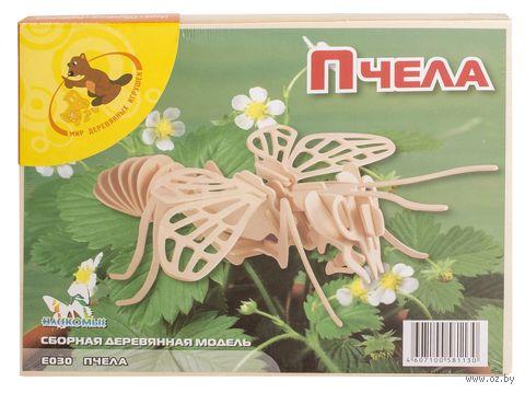 """Сборная деревянная модель """"Пчела"""" (большая) — фото, картинка"""