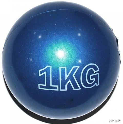 Медбол 1 кг (арт. NEY-1kg-N) — фото, картинка