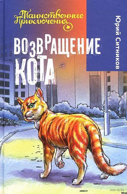 Возвращение Кота — фото, картинка