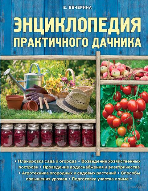 Энциклопедия практичного дачника. Елена Вечерина