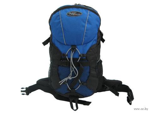 """Рюкзак """"Стриж-18"""" (цвет: синий/черный)"""