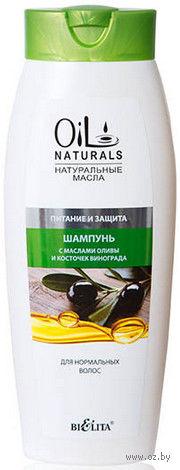 """Шампунь с маслами оливы и косточек винограда """"Питание и защита"""" (430 мл) — фото, картинка"""