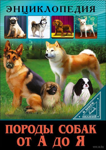 Породы собак от А до Я — фото, картинка