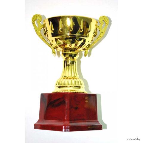 Кубок сувенирный (арт. W0041-B) — фото, картинка
