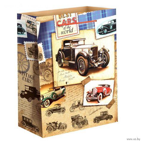 """Пакет бумажный подарочный """"Автомобили"""" (11х14х5 см; арт. 10733080)"""