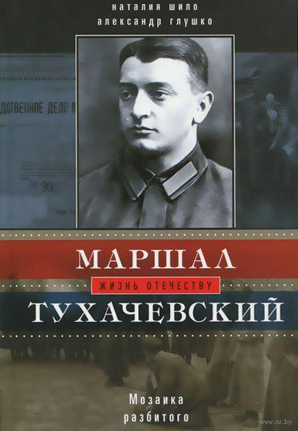 Маршал Тухачевский. Мозаика разбитого зеркала. Александр Глушко
