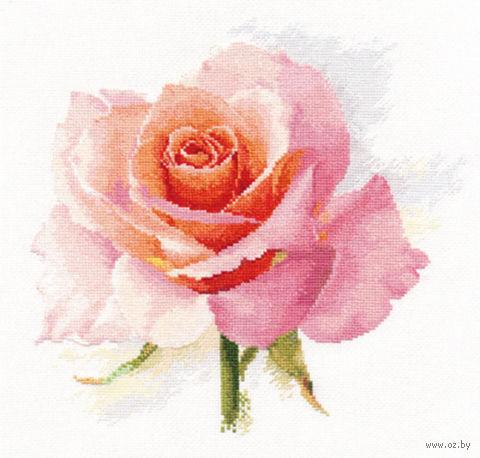 """Вышивка крестом """"Дыхание розы. Нежность"""" (240х240 мм) — фото, картинка"""