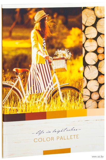 """Тетрадь общая в клетку """"Color Pallete"""" (А4; 80 листов; в ассортименте) — фото, картинка"""