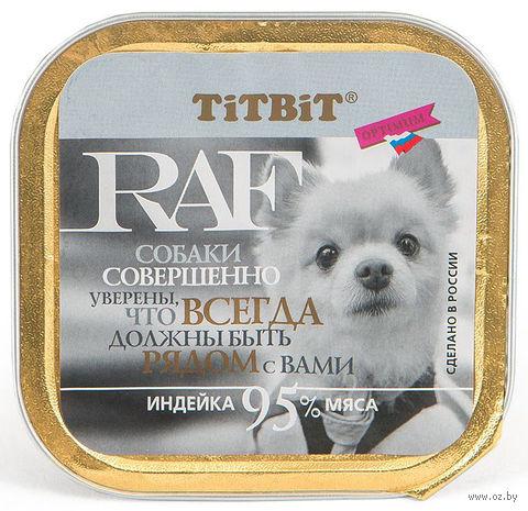 """Консервы для собак """"RAF"""" (100 г; индейка) — фото, картинка"""