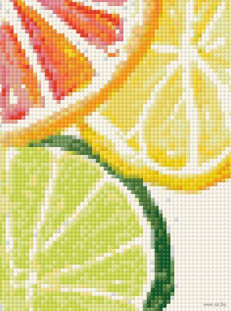 "Алмазная вышивка-мозаика ""Цитрусы"" (150х200 мм) — фото, картинка"