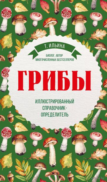 Грибы. Иллюстрированный справочник-определитель — фото, картинка