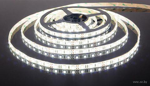Лента светодиодная LED SMD 5050/60 IP20-14.4W/CW (5 м)