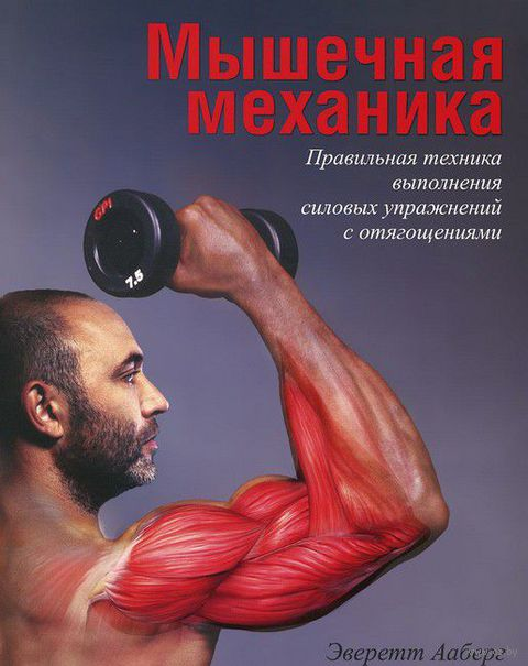 Мышечная механика. Эверетт Ааберг