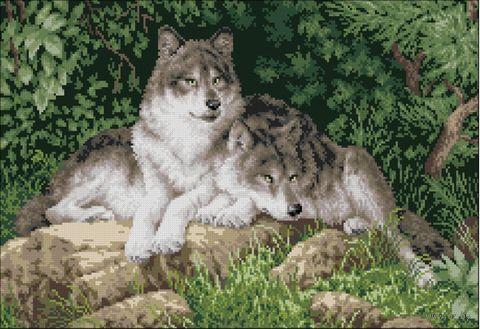 "Вышивка крестом ""Волки"" (300х400 мм) — фото, картинка"