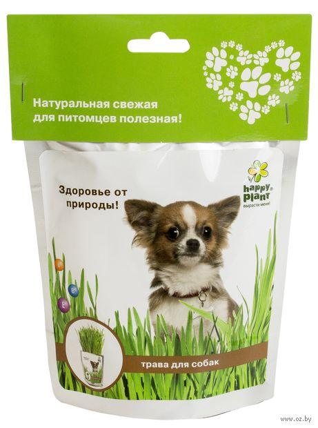 """Набор для выращивания """"Трава для собак"""""""