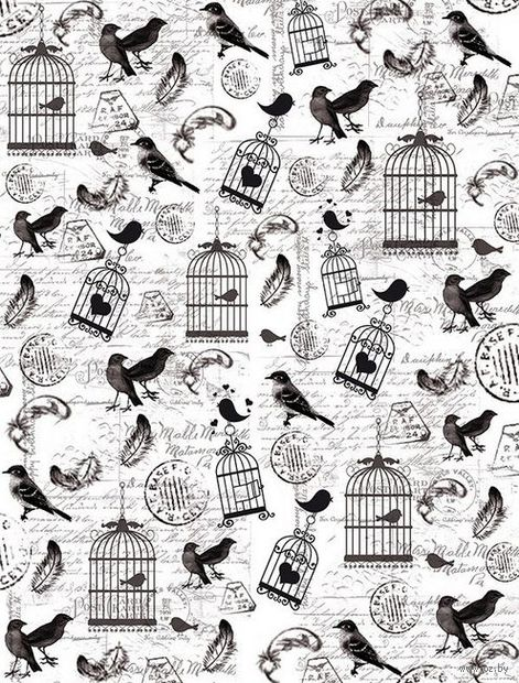 "Пленка-оверлей ""Птички и клетки"" (210х300 мм)"