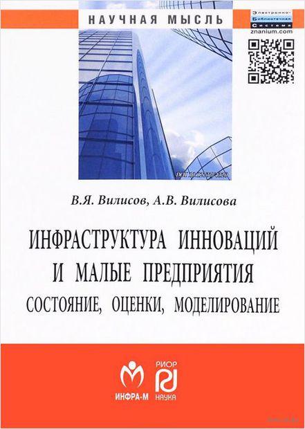 Инфраструктура инноваций и малые предприятия. Состояние, оценки, моделирование — фото, картинка