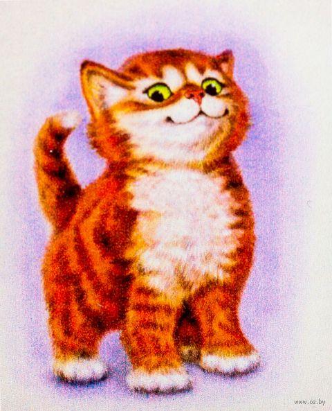 """Алмазная вышивка-мозаика """"Важный кот"""""""