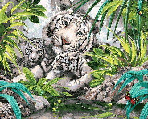 """Картина по номерам """"Бенгальские тигры"""" (400х500 мм)"""